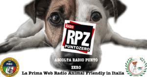 BANNER_FACEBOOK_PROMO_RPZ1-300x157 BANNER_FACEBOOK_PROMO_RPZ1