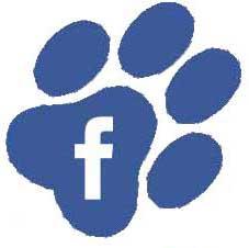 facebook Canali Social