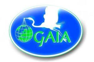 gaia_99064-300x200 gaia_99064