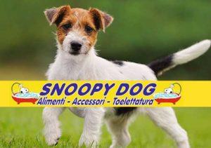 snoopy-dog-300x211 snoopy-dog