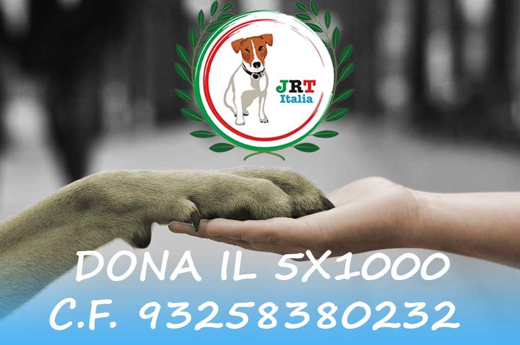 zampa-1 Dona il 5x1000