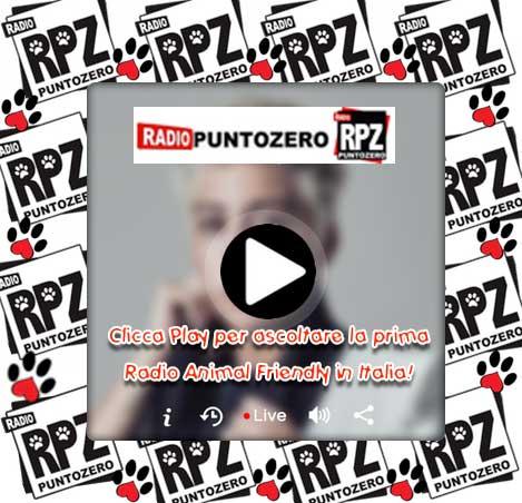 immagine-BANNER-Player-copia RPZ nel tuo sito web