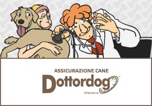dottordog-assicurazione I vantaggi