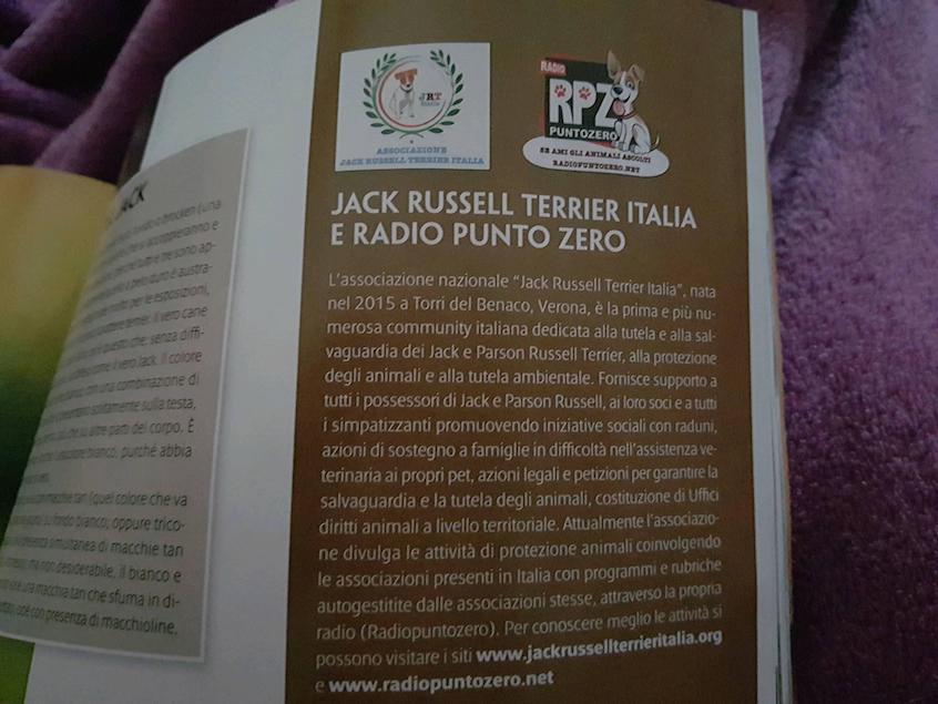 28234952_977724472378632_3674030359018136774_o-1 Jack Russell Terrier Italia e RadioPuntoZero sulla Rivista Quattrozampe