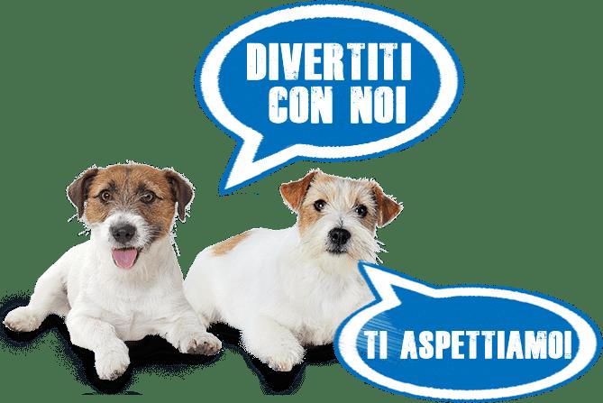jack-russell-italia-eventi-2 JRT Calendario eventi
