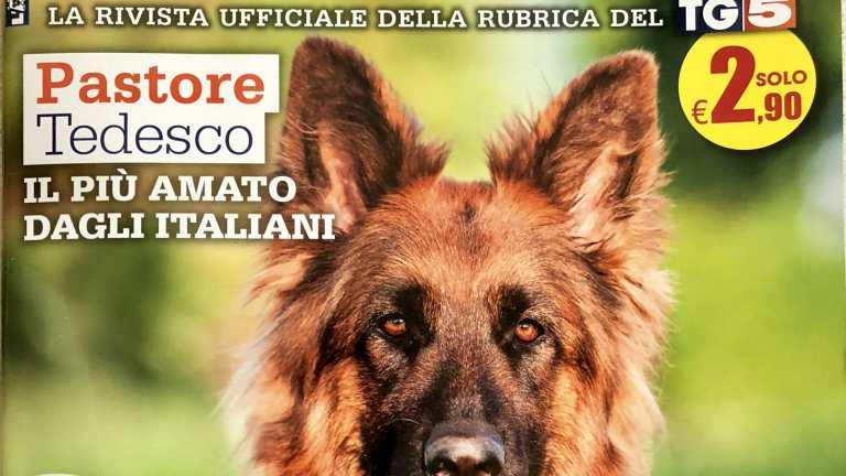 Associazione Nazionale Jack Russell Terrier Italia Arca Di Noè Mgazine Maggio 2018