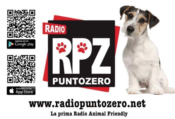 banner-rpz-promo-post.jpg
