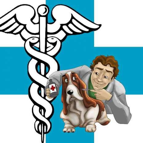 fc5f559dd43f64f3b9f61d94e18242ef_veterinario-465-465-c-60 I consigli del Jack